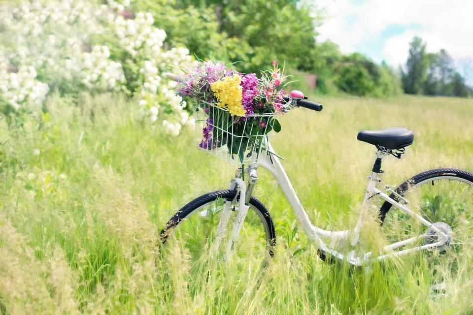 vélo sur la Loire